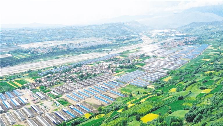 临夏州临夏县积极调整农业产业结构